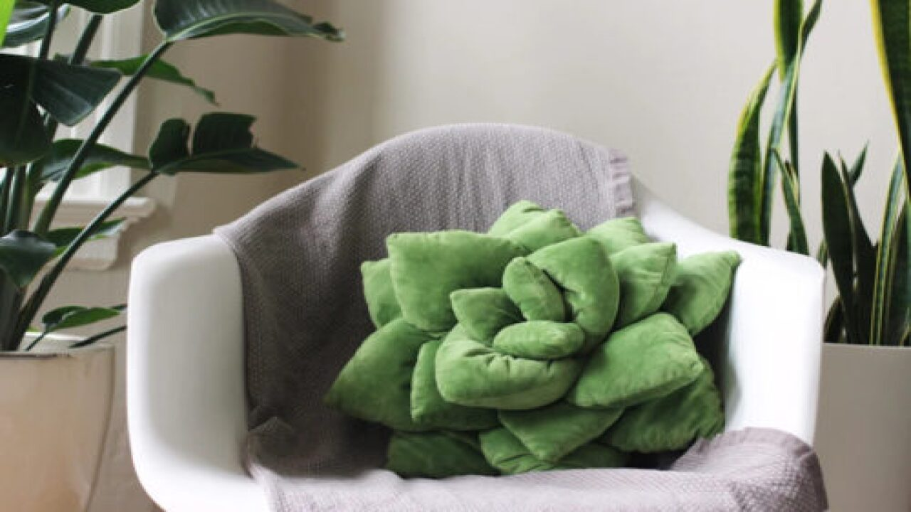 Snuggly Succulent Pillows Are Perfect For Plant Lovers