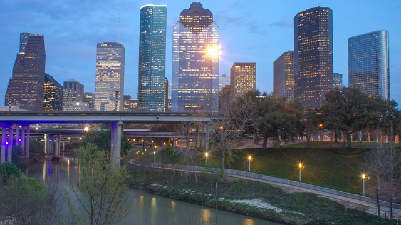 "Houston officials halt construction of ""robot brothel"""