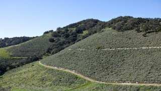 Land Conservancy breaks ground on Pismo Preserve roadway improvements