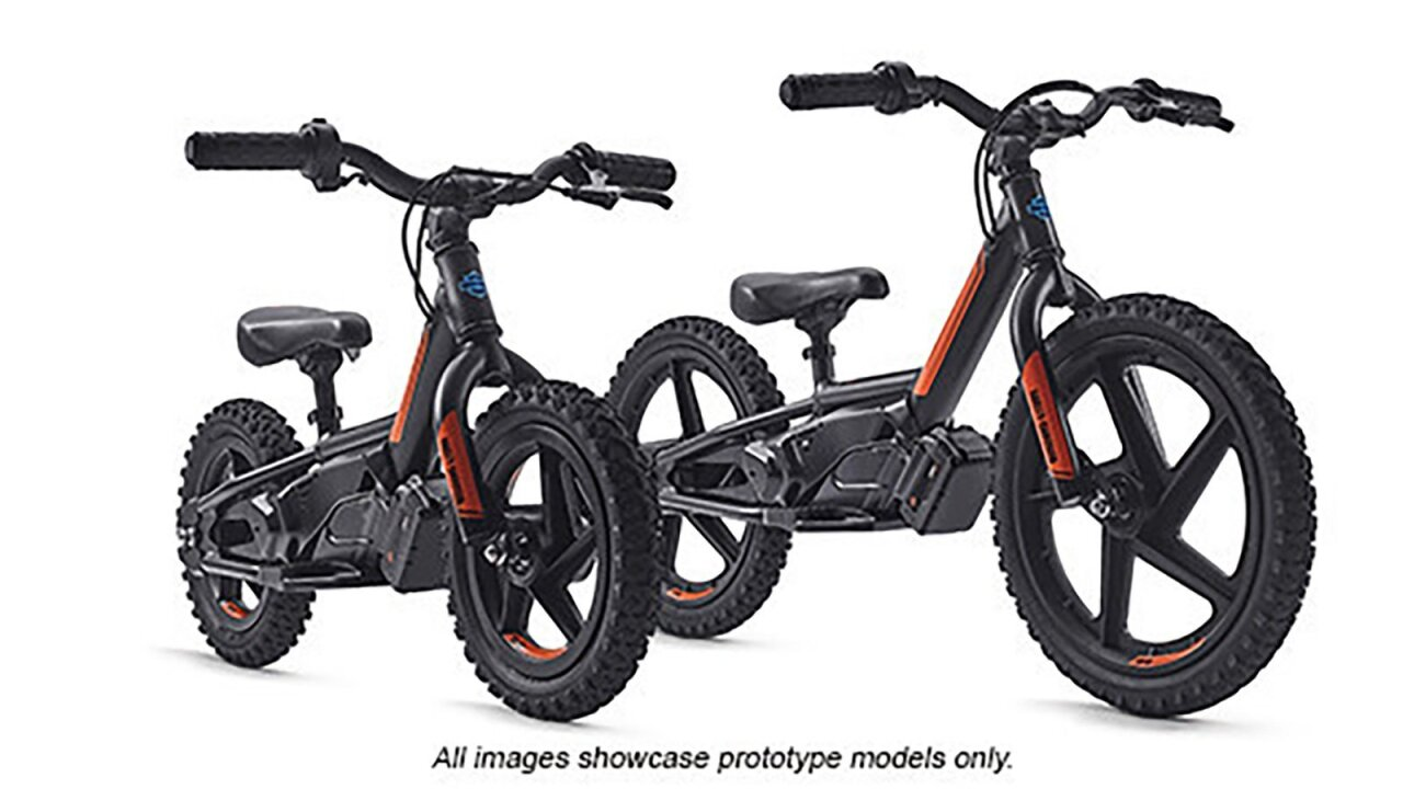 Harley-Davidson trying to attract new generation of riders, buys electric bike maker for kids