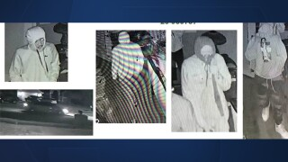 Home invasion/robbery suspects