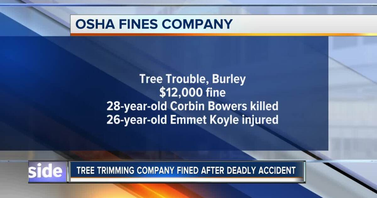 OSHA fines Idaho tree-trimming company after deadly accident