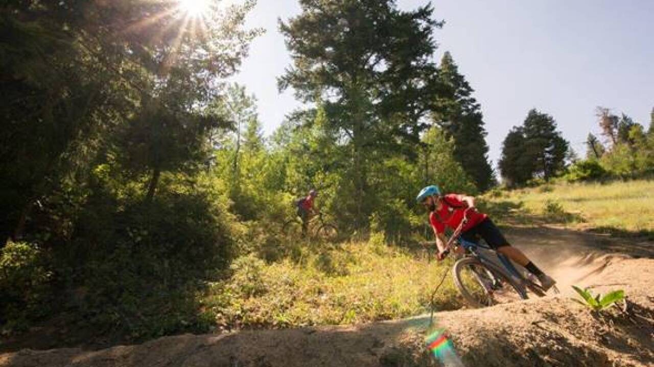 New at Bogus Basin this summer:  A lift served mountain bike park off of the Morning Star Express high speed quad chairlift.  The park features new and reconfigured downhill only trails that catero a range of rider skill levels and abilities.   Photo courtesy of Bogus Basin
