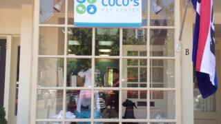 Coco's Pet Center