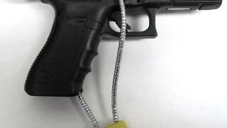 jackson gun locks.jpg