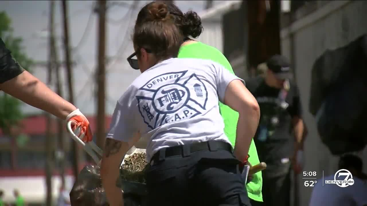 dpd day of service.jpg