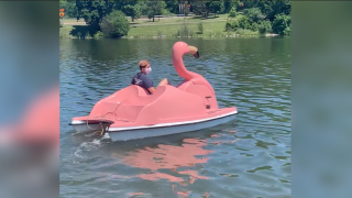 The FLOATmingos on Hoyt Lake in Delaware Park have been named!