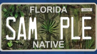 FLORIDA NATIVE LICENSE PLATE.png