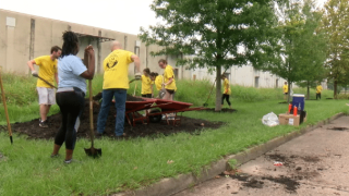 Local CPAs volunteer for first-ever Day of Service
