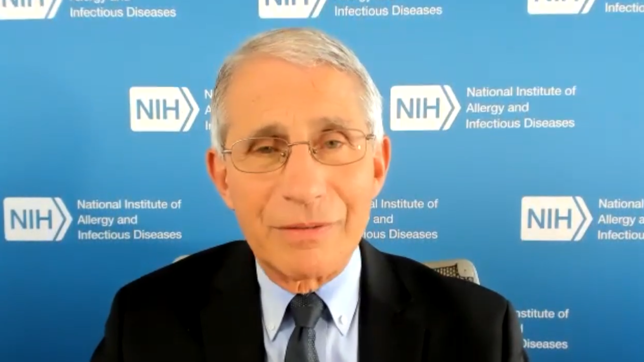 fauci image.PNG