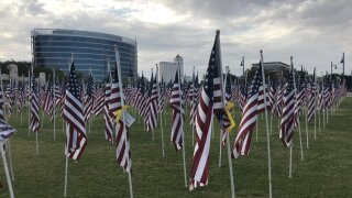 Tempe Beach Flags.jfif