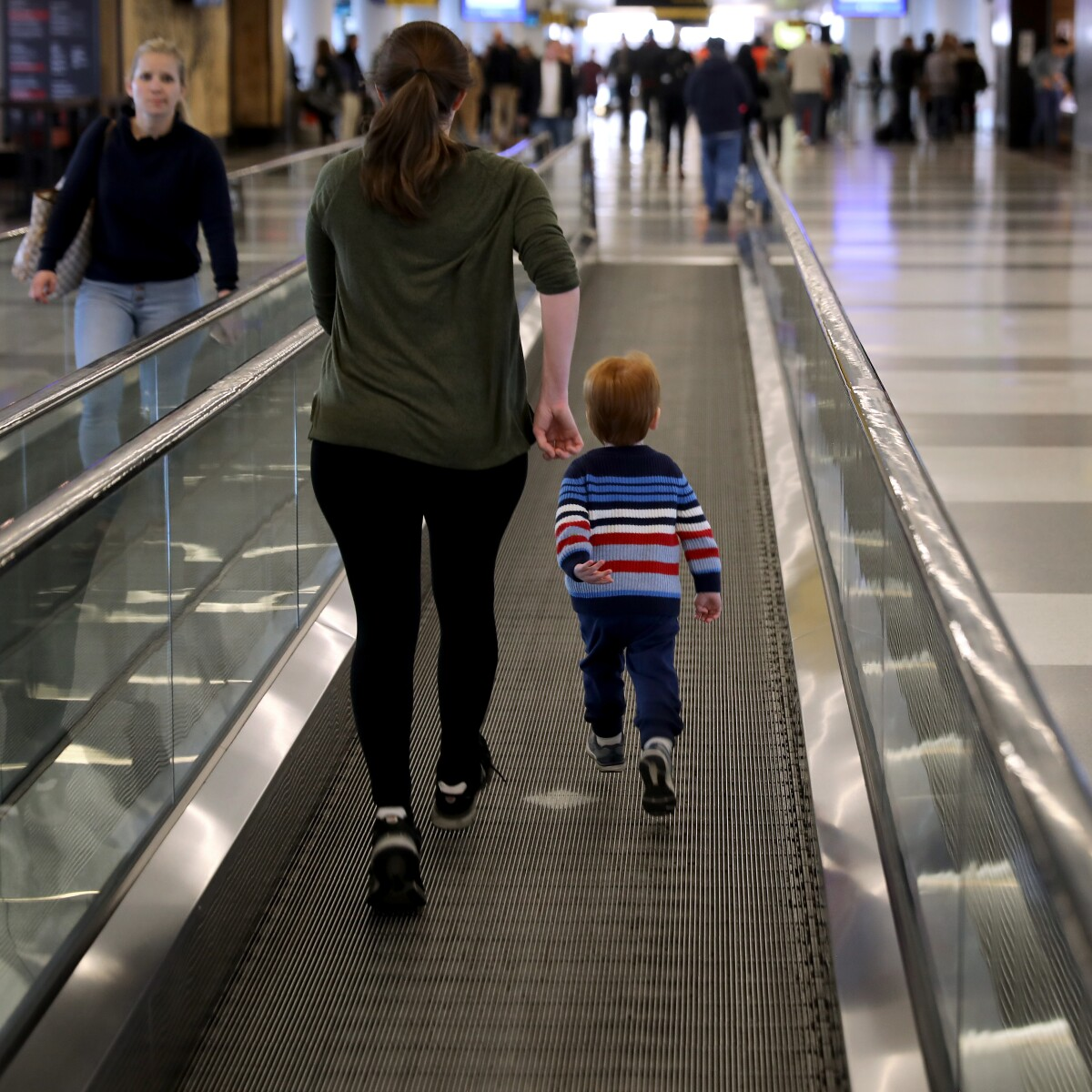Dog's Paw Gets Stuck On Moving Walkway At DIA