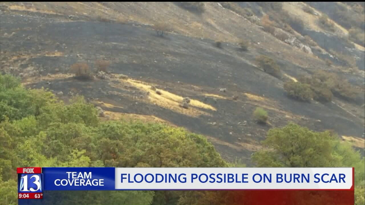 Homes near 'Francis Fire' burn scar prepare for possible mudslides