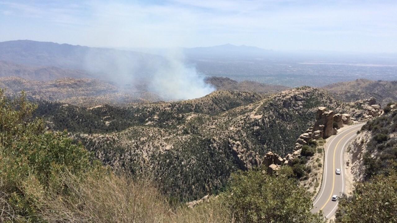 Wildfire burning on Mount Lemmon