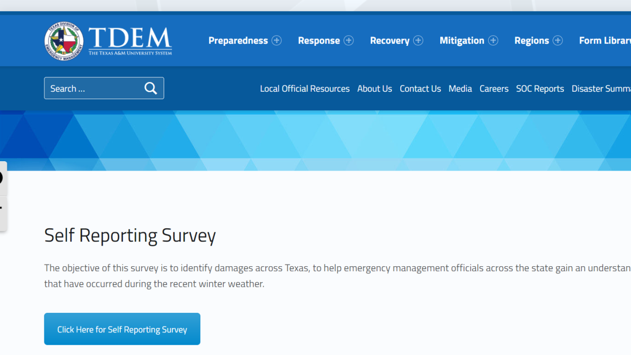 self reporting survey texas.PNG
