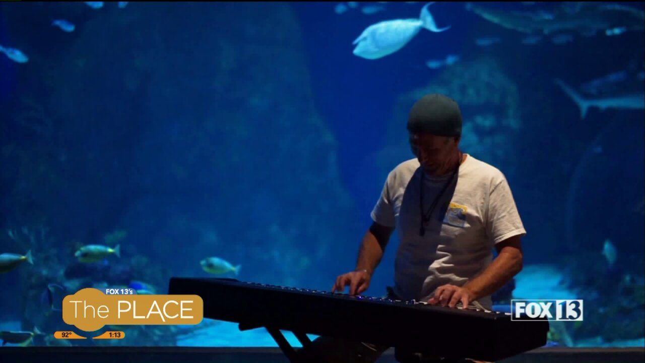 Watch this composer write music to the motions of marine life, in real time!