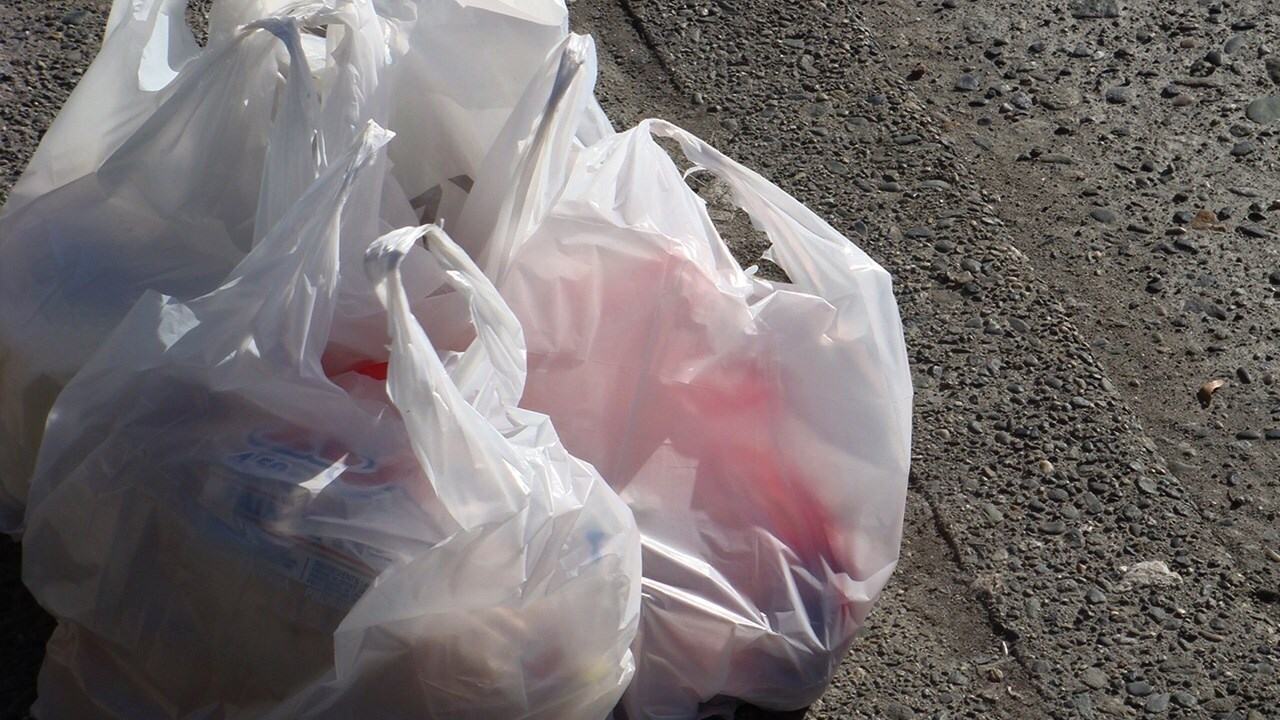 Logan City Council passes plastic bag ban