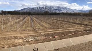 Dry New Mexico