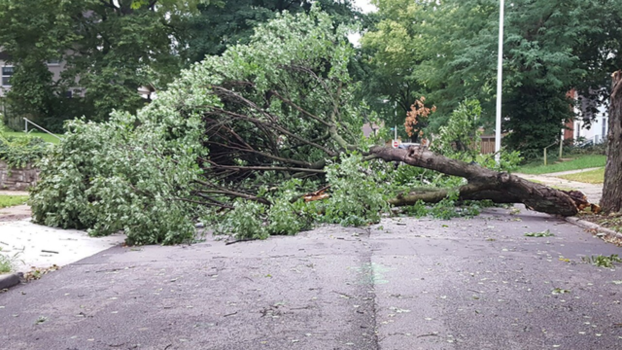 Storms burble up, hit Kansas City metro
