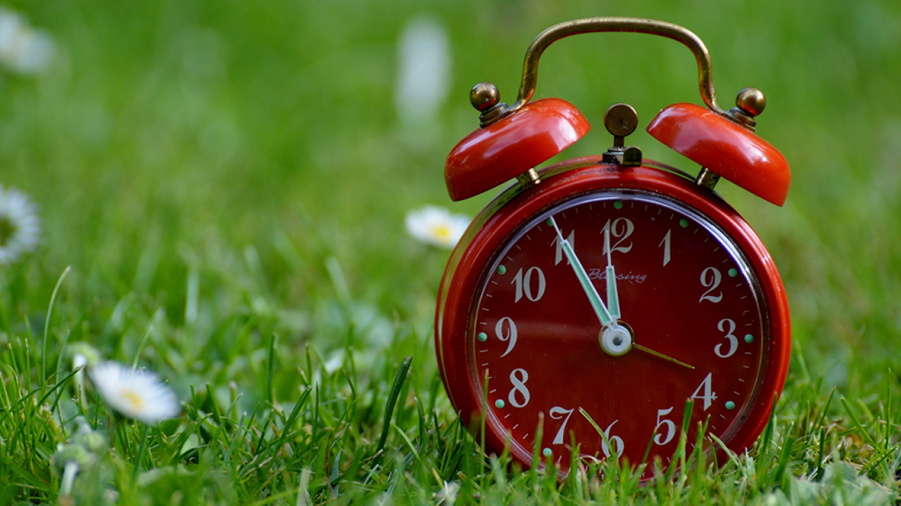 Daylight Saving Time: Florida lawmakers want 2019 to be the last time anyone has to 'Spring Forward'