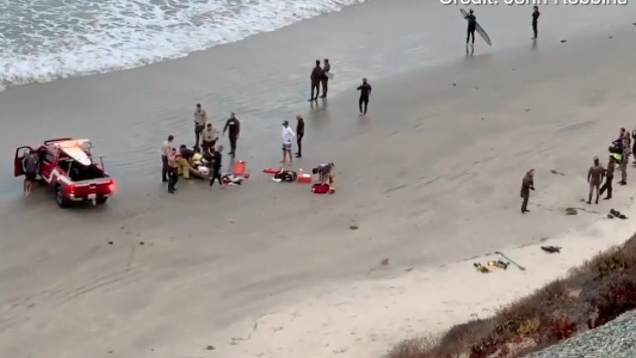 Shark attack reported in Encinitas