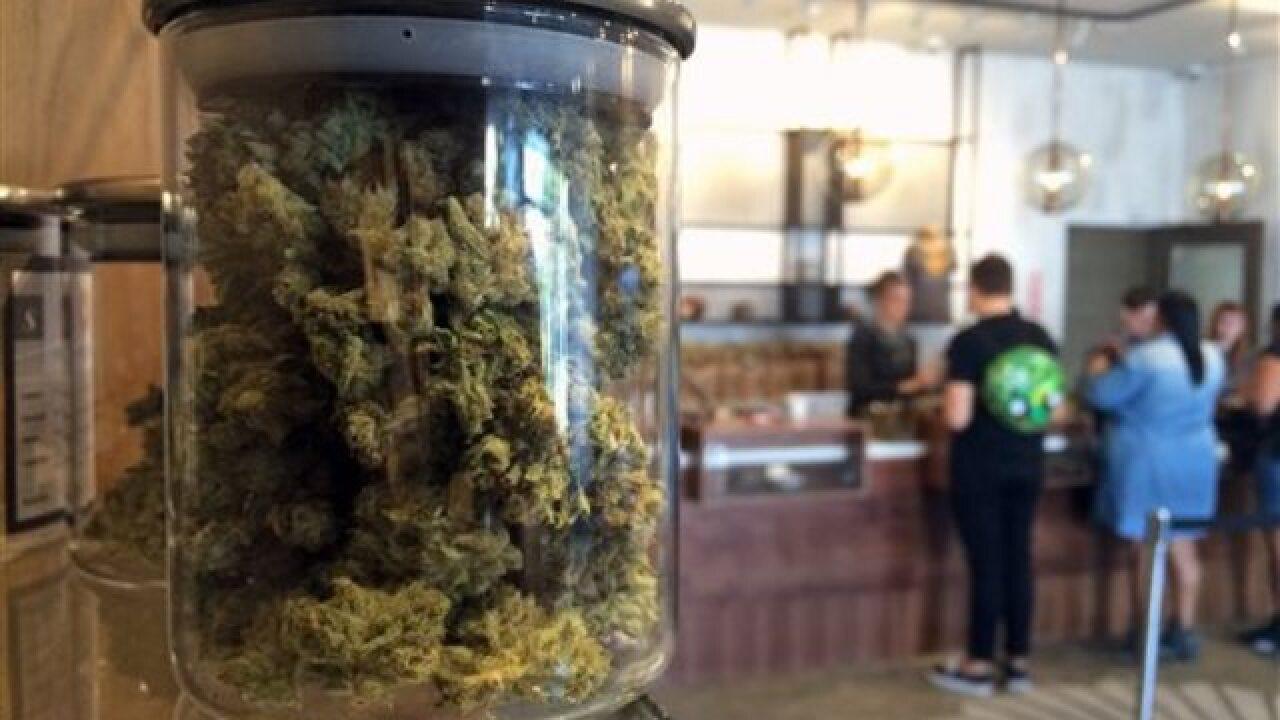 Californians eye pot legalization in November