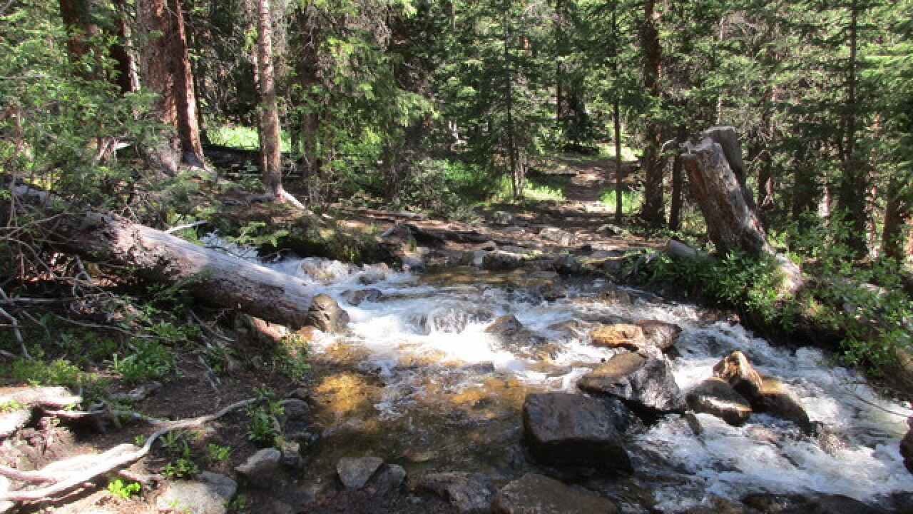 Hiking Segment 10 of the Colorado Trail