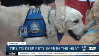 Tips to keep pets safe in the heat