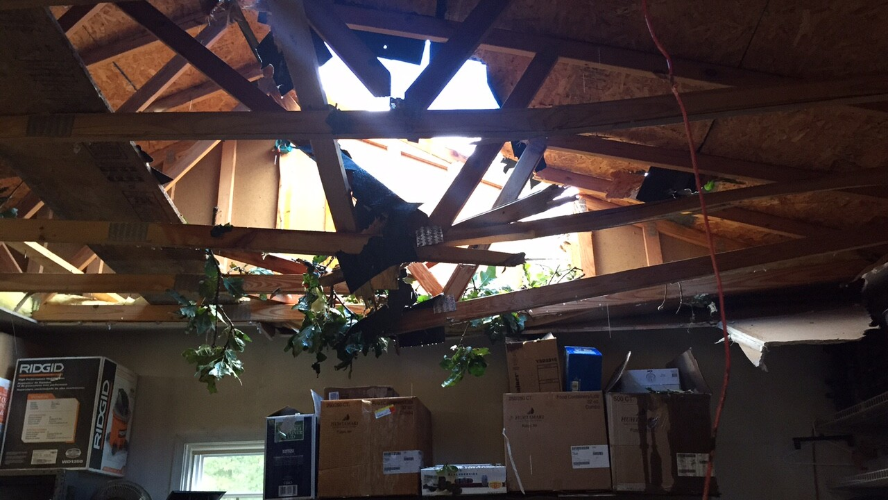 Tree smashes into American Legion building in Midlothian