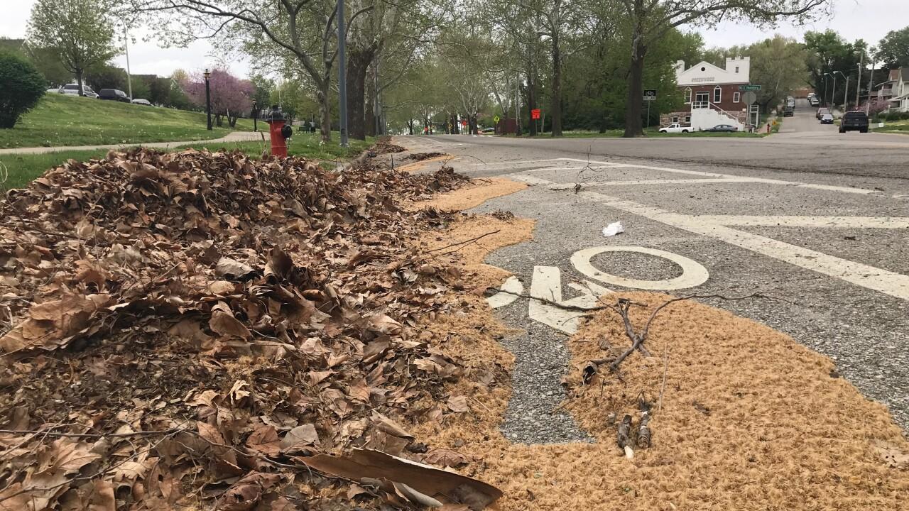 Street sweeping program cut
