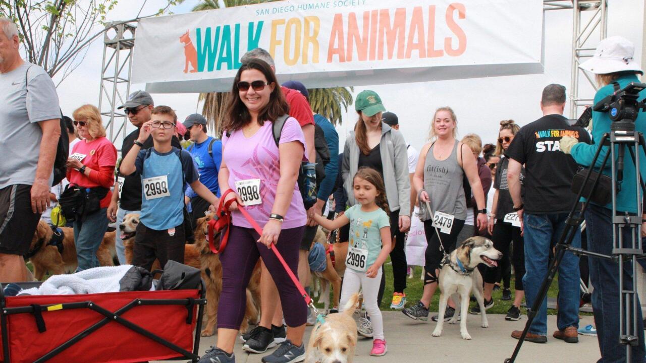 san diego humane society walk for animals