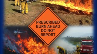 prescribed-burn.jpg