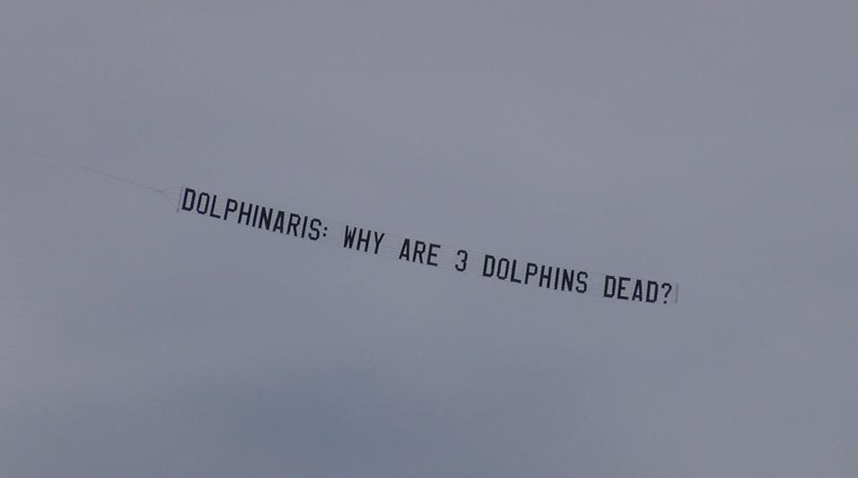 Dolphinaris Dead Dolphin Banner Waste Management Phoenix Open