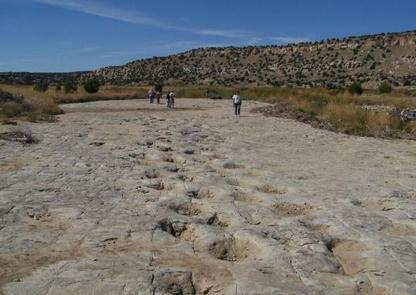 Dinosaur footprints at Picket Wire Canyonlands