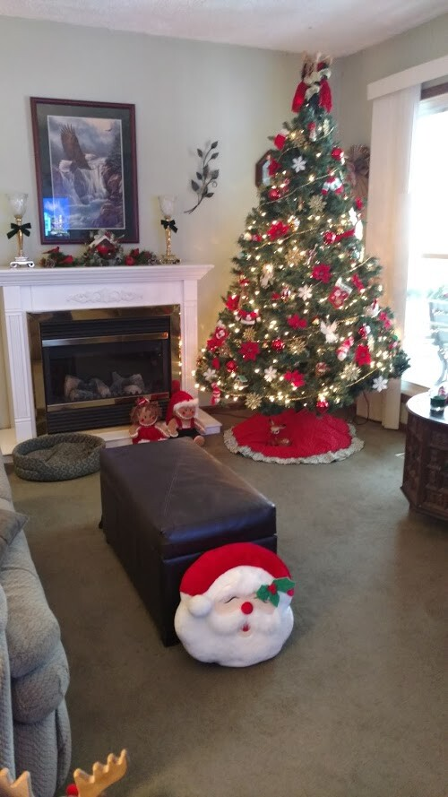 Christmas tree sent by Jeane and Judy Royale.jpg