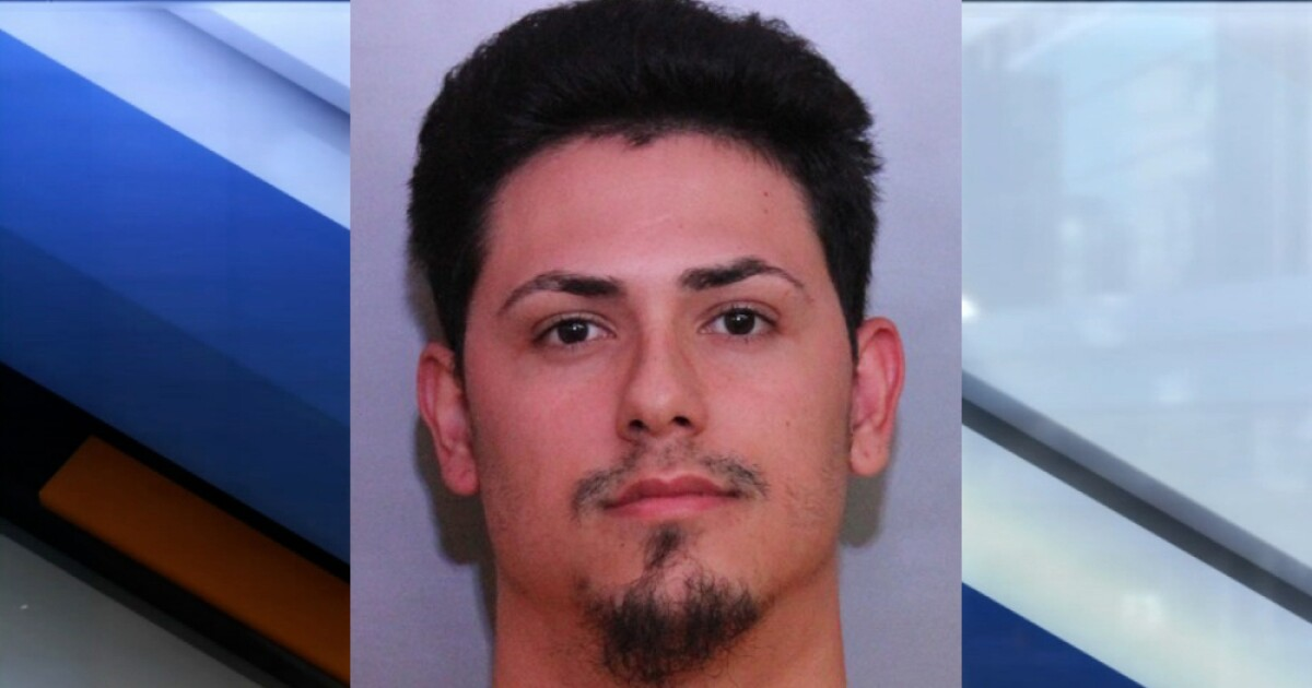 Lakeland man arrested for punching little league umpire in the face, deputies say