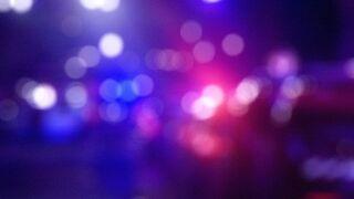 Seven arrested for criminal mischief