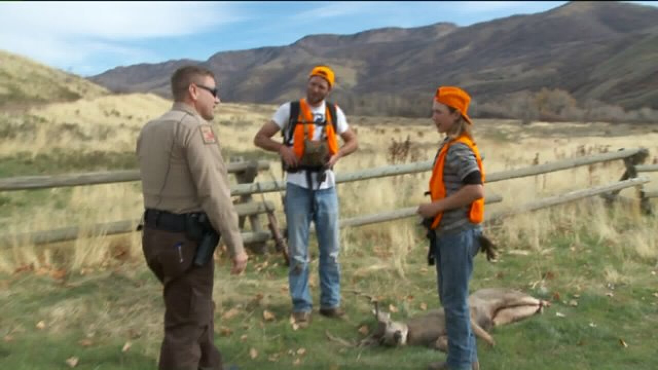 Wildlife officials say odds are good for Utahns hunting deer this season
