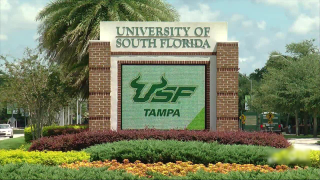 USF-GENERIC-UNIVERSITY-SOUTH-FLORIDA.png