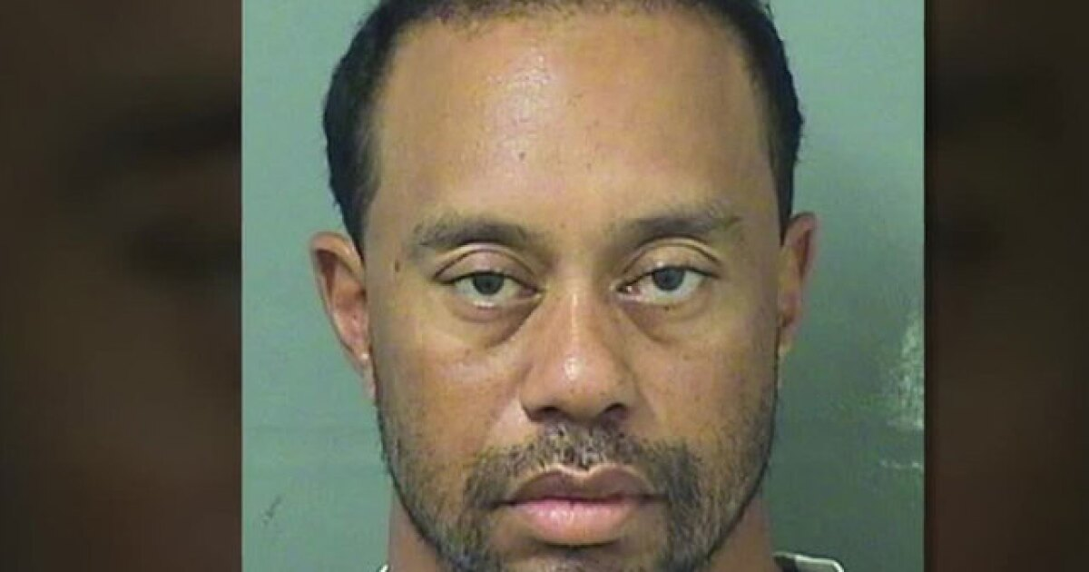 Golfer Tiger Woods fell asleep at the wheel, police say