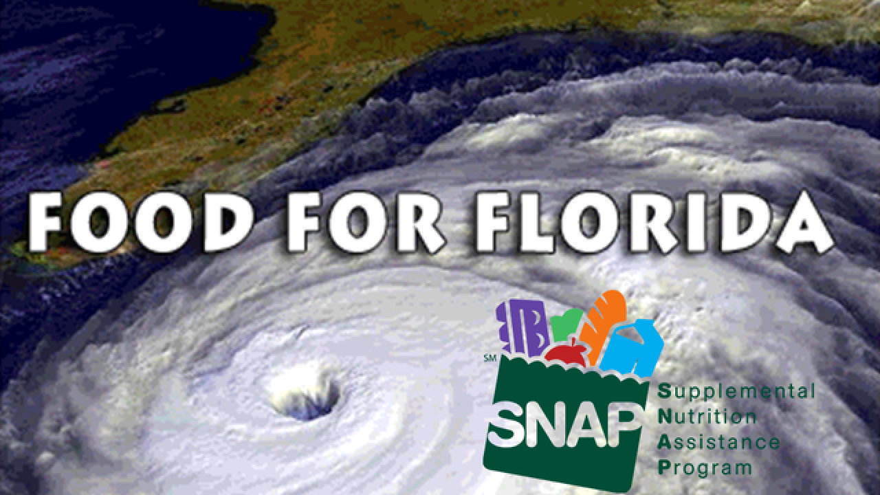 Hurricane Irma Florida Disaster Snap Benefits Guide