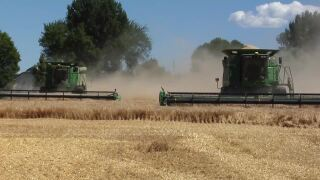 Montana Ag Network: Collaboration continues with Mexico and Montana barley growers