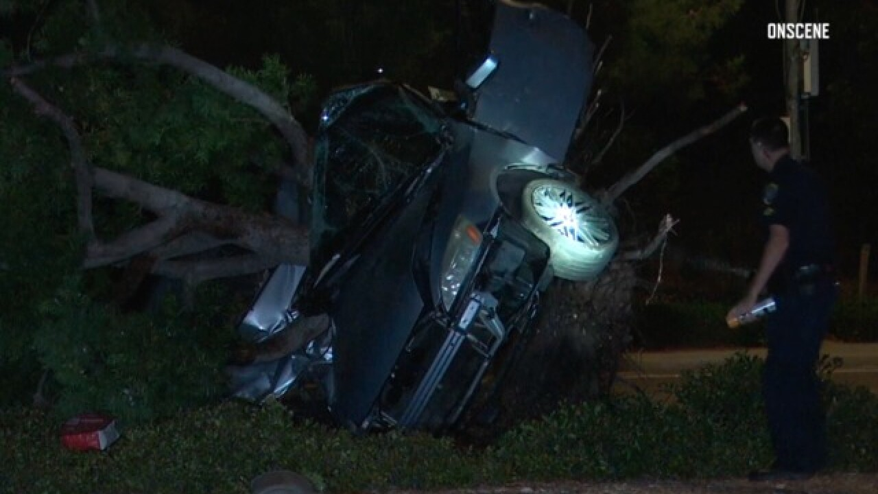2 dead in Carmel Valley crash that uprooted tree