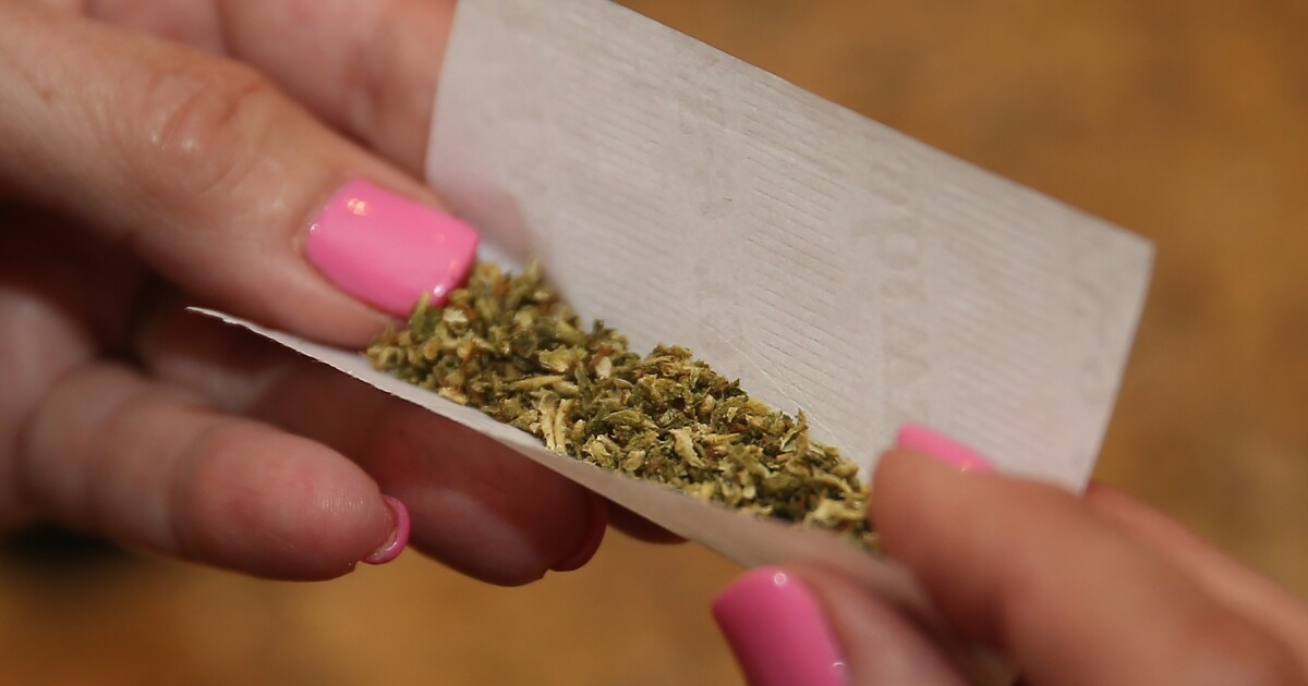 Virginia lawmakers not ready to legalize marijuana - yet
