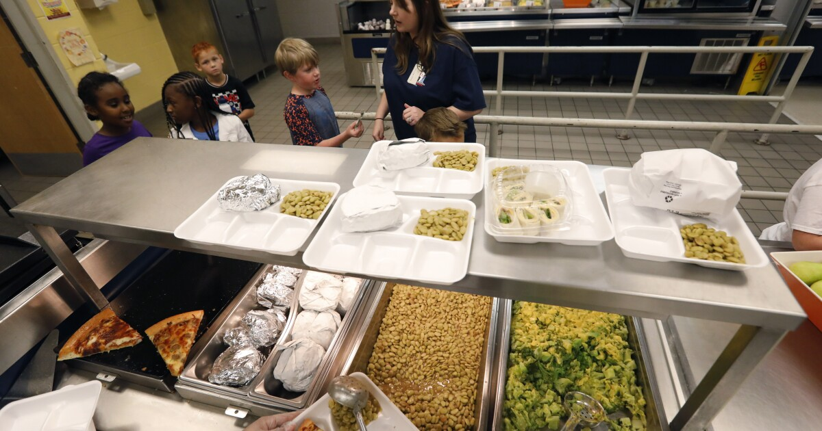 Free lunch during spring break for kids in Manatee County