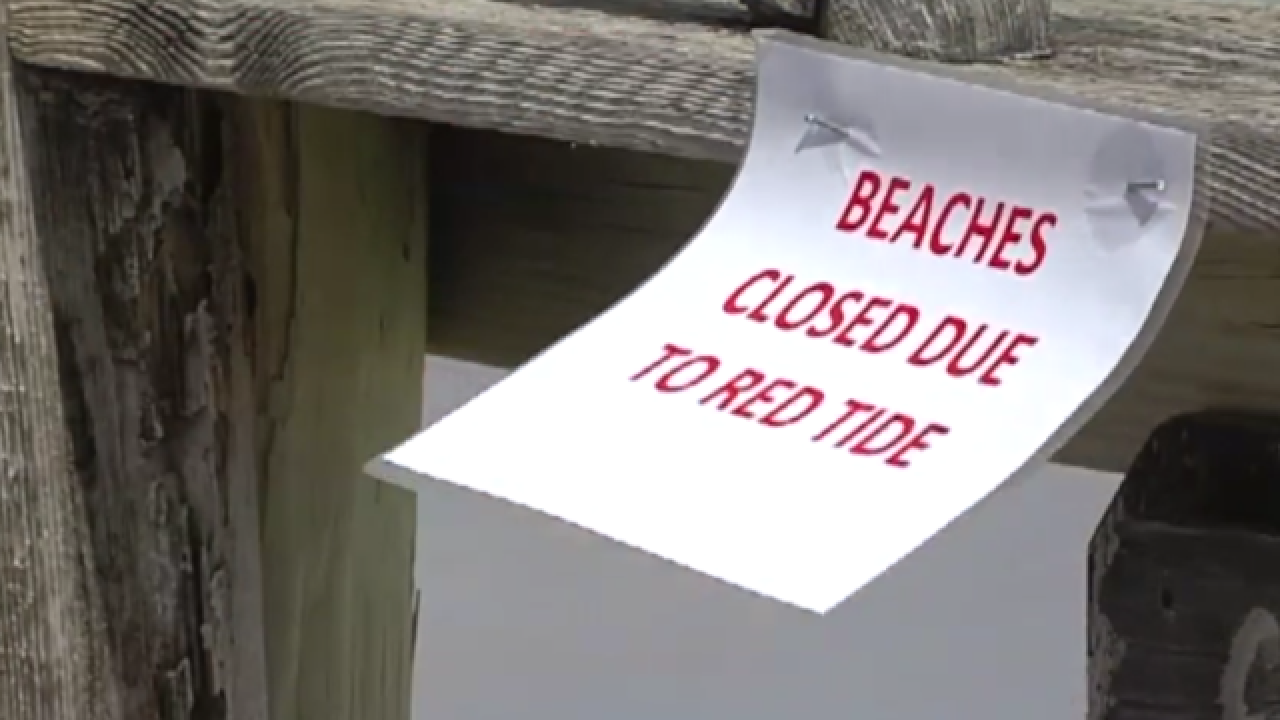 Costly red tide cleanup will last for weeks