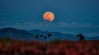 "Super ""pink"" moon over Arroyo Grande, California"