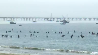 surfers paddle out.PNG