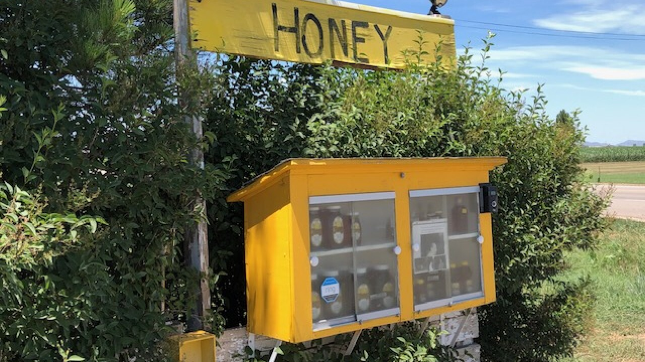 Thief steals honey