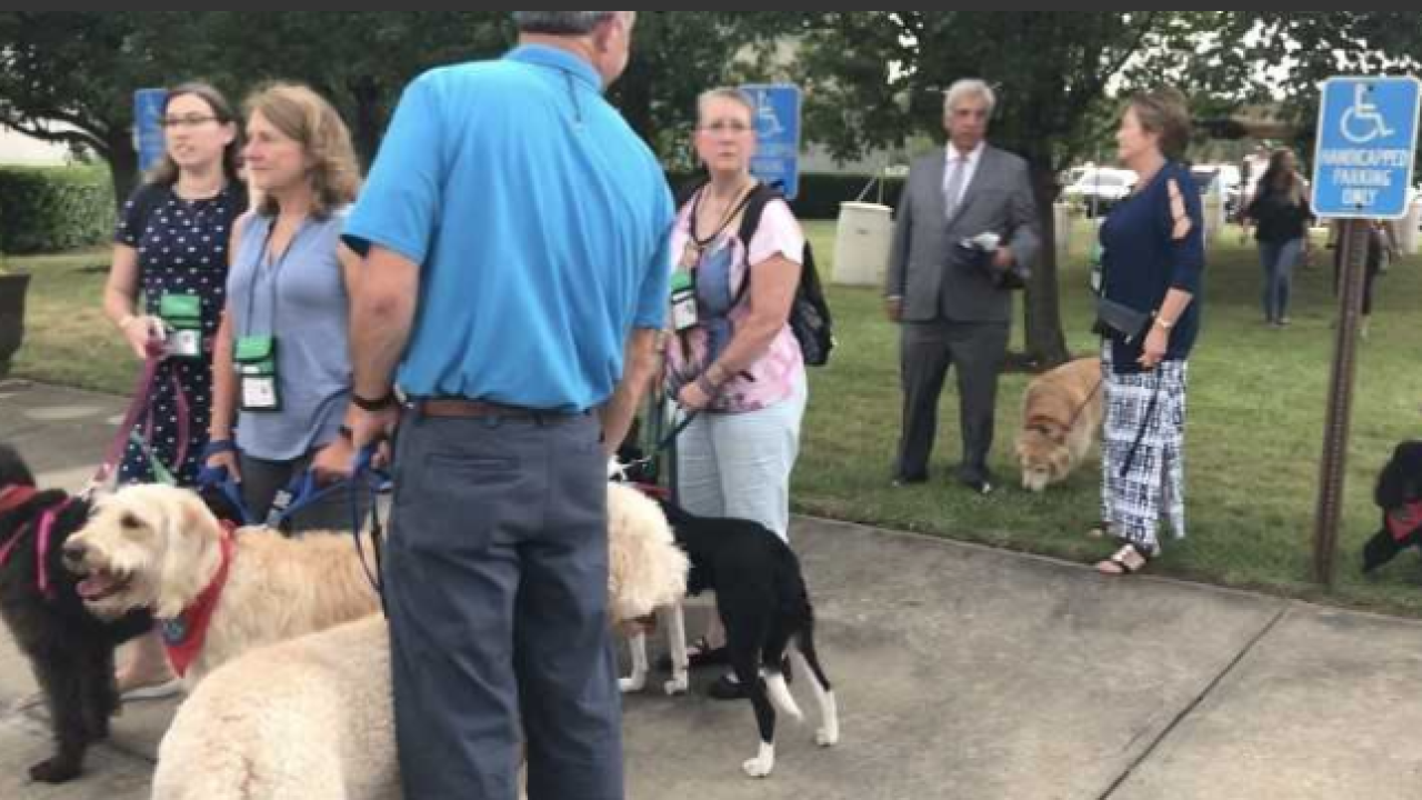 Therapy dogs helping Virginia Beach through tragedy